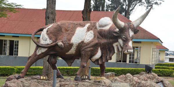 Mbarara High School
